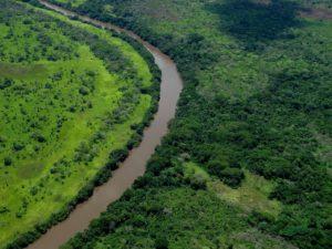 Rivière du Congo