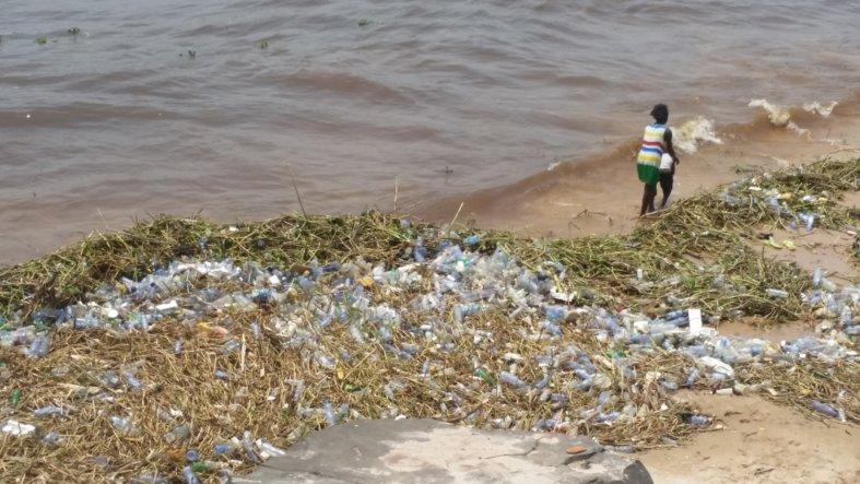 Le fleuve Congo : l'invasion désastreuse des bouteilles en plastique